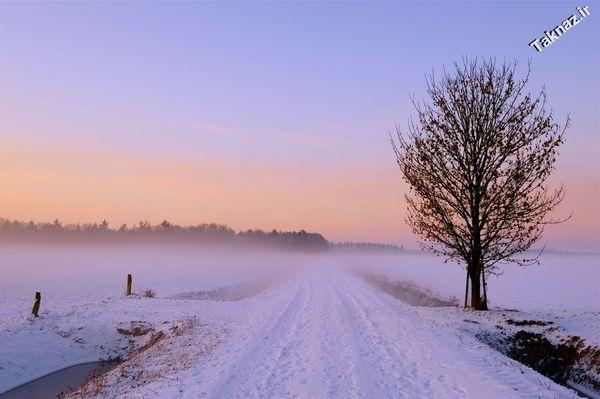 Photo: A winter landscape in the Netherlands